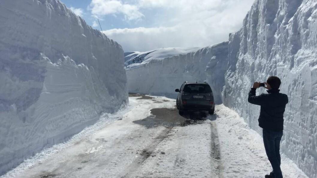 STENGD: Etter ein vinter med mykje snø var brøytekantane ekstra høge då Tindevegen opna i mai. No er vegen stengd for vinteren, opplyser Tindevegen.no. Foto: Facebook.com/Tindevegen.