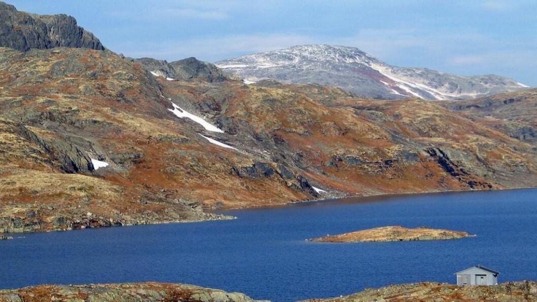 UTLEIGE: Årdal Jeger og Fiskeforeining leiger ut hytter på nettsida inatur. Illustrasjonsfoto.