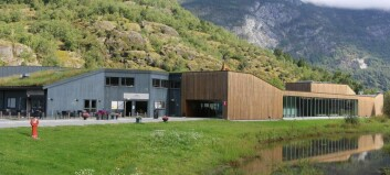 Gjesme og årstidene vert stilt ut på Sogn kunstsenter