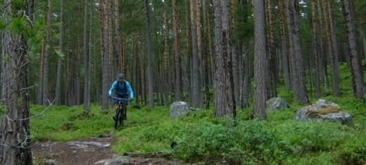 Då syklistane inntok skogane vart det kamp om reviret