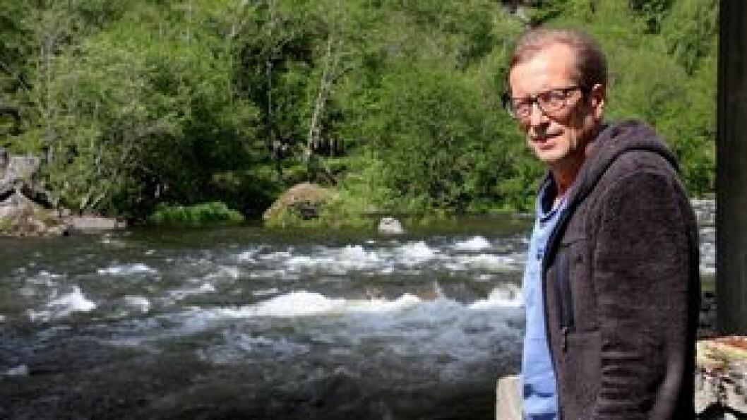 SVAK SESONG: Fisket i Lærdalselvi har ikkje vore det beste i 2017, men for Lasse Sælthun dreier det seg no berre om éin ting – at elva vert friskmeld.