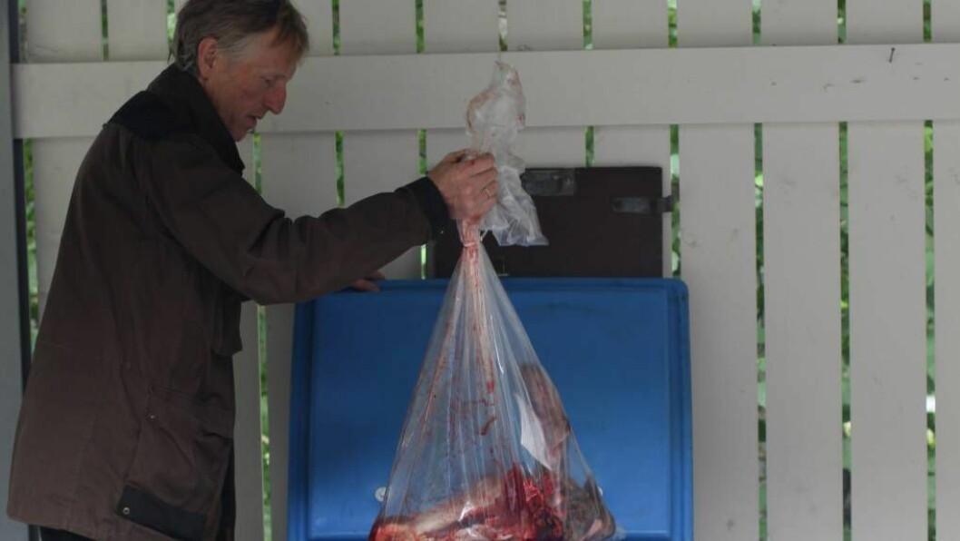 TIL TESTING: Harald Skjerdal leverer inn det første hjortehovudet som vart testa for CWD i Aurland. Ingen av dei testa hjortane eller elgane som er testa til no har fått positivt utslag. Foto: Knut Fredrik Øi