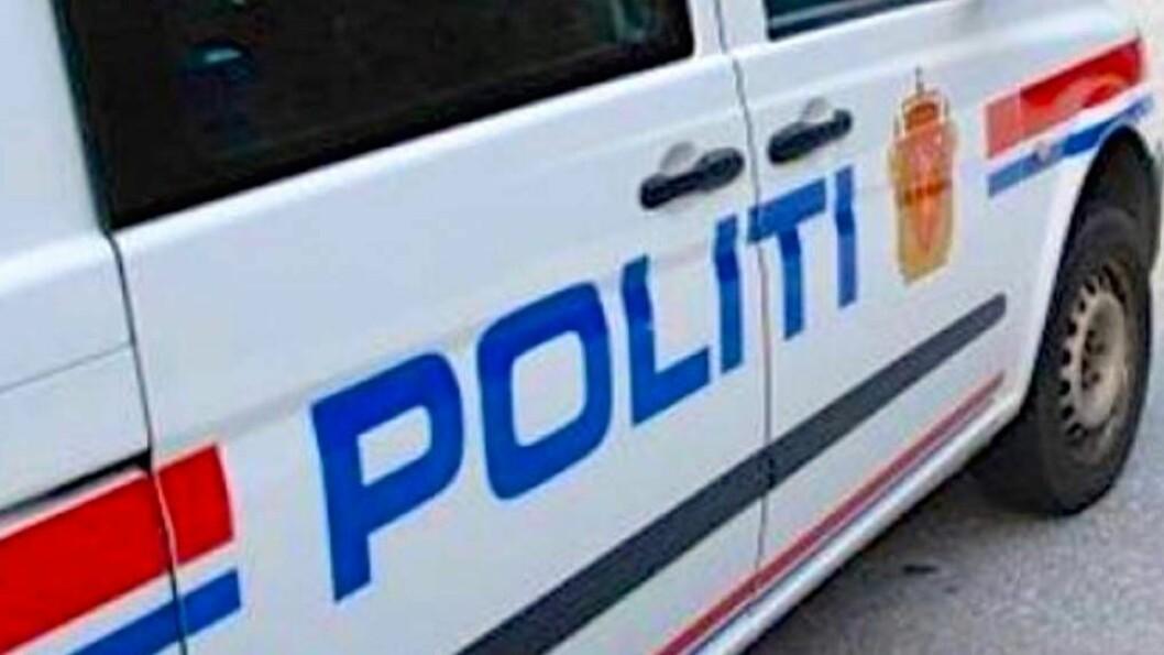 HJORT: Politiet melder om fire påkøyrslar av hjort fredag morgon. Arkivfoto