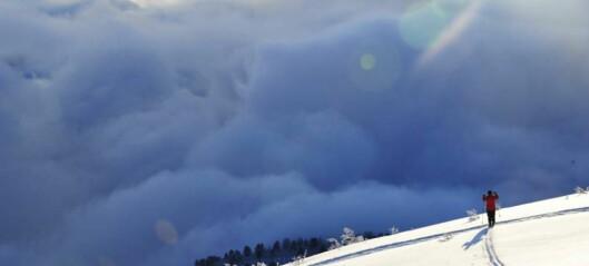 Helgaturen: Skitur til Bjørnaholten