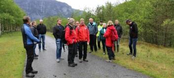Seier ja til at krafta skal gå i lufta over fjorden