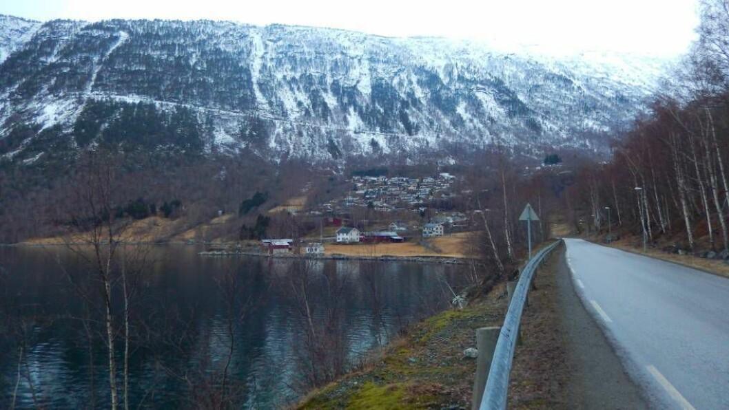 BREIBAND: Årdal kommune har søkt om støtte til breibandsutbygging i øvre del av Seimsdalen. Foto: Sunniva K. Øvstetun.