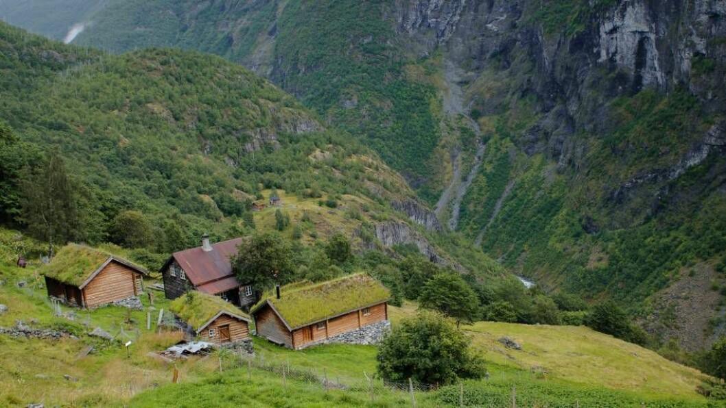 NY STATUS: Utladalen i Årdal er ein av innfallsportane til Jotunheimen.