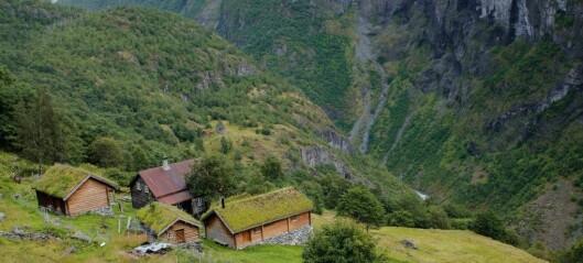 Årdal har fått status som nasjonalparkkommune