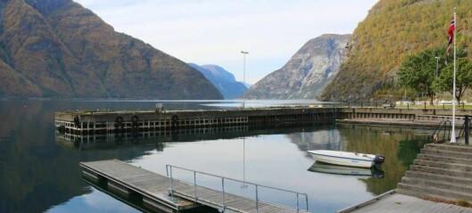 Vil freista båtgjester med ny hamn