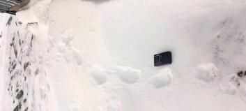 Får snøskuterløyve til jakt på jerv