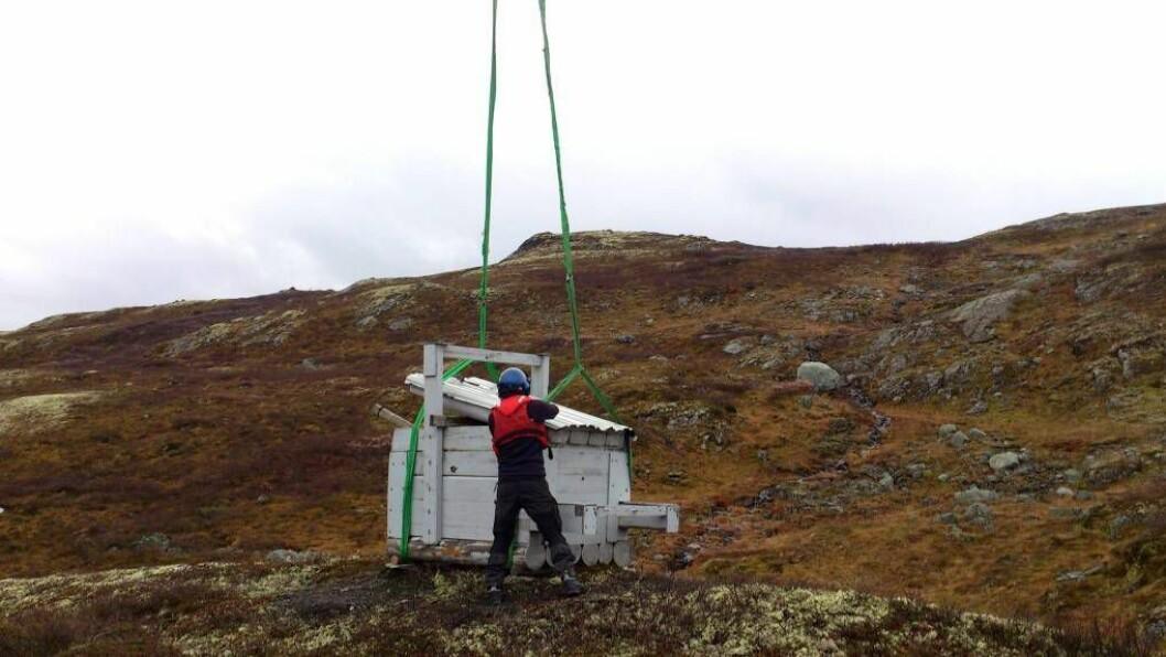 HAR STARTA: Bilete er frå Naddvik sankelag sin jervbås som er sett ut på høgfjellet i Årdal i samband med lisensjakt på jerv.Foto: Ole BjarneHovland