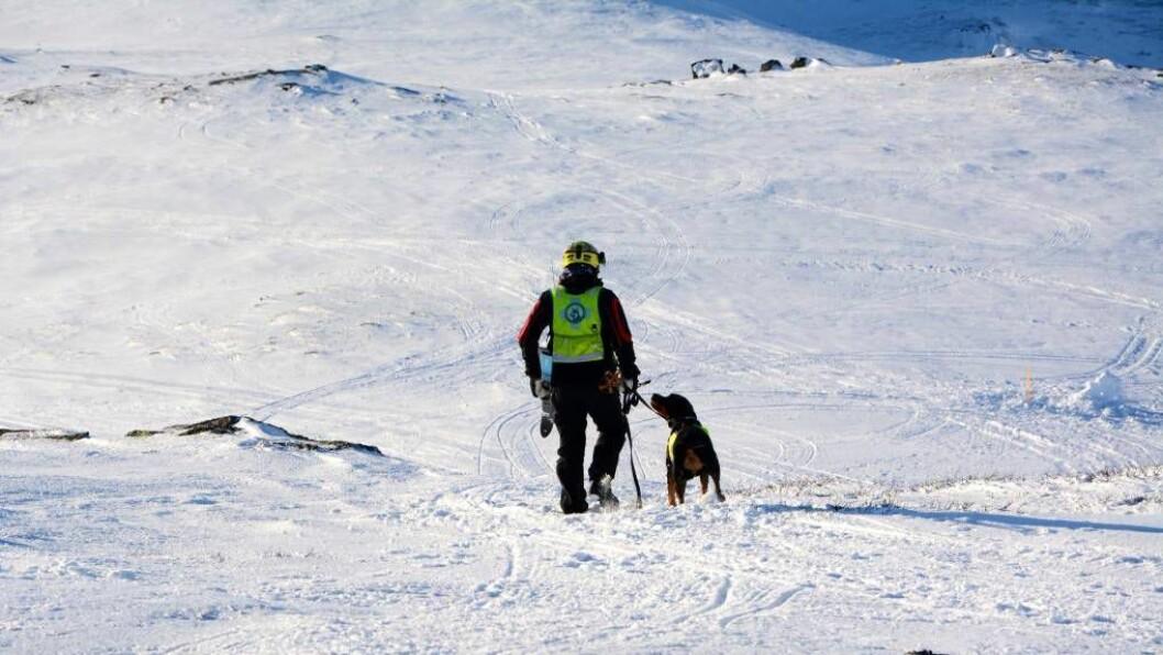 AKTIV DAG TIL FJELLS: Hundeførar Charles Johnsen og lavinehunden Dixie er klar for turen ned til bygda. Foto: Ina Eirin Eliassen