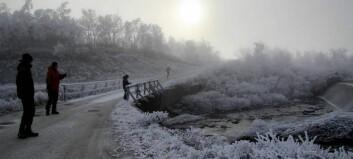 Brrr, dette var ei av dei kaldaste nettene hittil i vinter