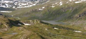 Lærdal kommune varslar søksmål