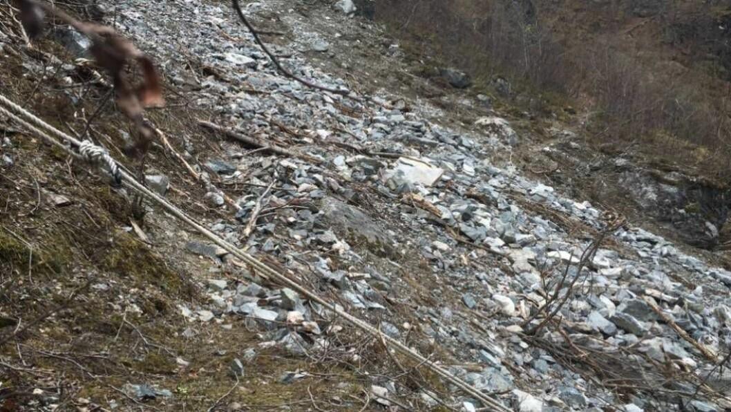 ÅTVARAR: Rigmor Solem i Statens naturoppsyn ber folk om å ferdast forsiktig dersom dei har tenkt seg til botnen av Vettisfossen. Foto: Privat.