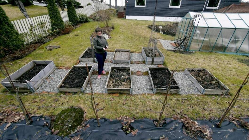 DYRK: – Det er jorda vi må dyrke for at plantane skal ha det bra, seier Marianne Utengen, gartnar i Det norske hageselskap. FOTO: Vidar Ruud