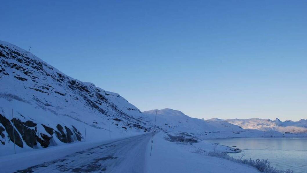 SNØSKREDTÅRN: Før vinteren skal det setjast opp 13 snøskredtårn ved fylkesveg 53 på Tyin. Biletet blei tatt under prøveprosjektet som blei gjennomført mellom 2010 og 2012. Foto: Wyssen Norge AS.