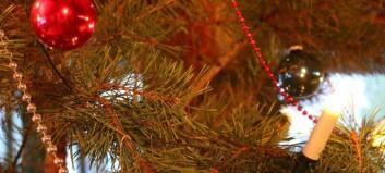 – Ikkje brenn juletreet i peisomnen