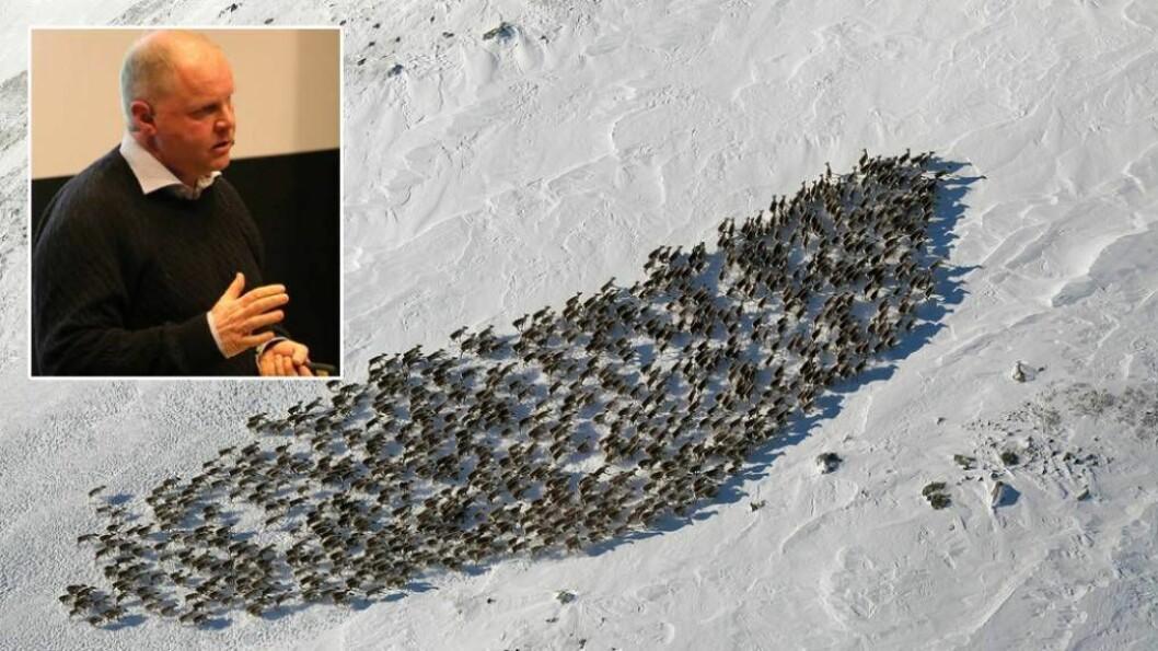 DYSTER BODSKAP: Veterinær Bjørnar Ytrehus i NINA meddyrehelse i ville populasjonar som spesialfeltkom med ein dyster bodskap til tilhøyrarane under informasjonsmøtet tysdag kveld. Foto: Ole Ramshus Sælthun/Harald Skjerdal.