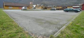 Utset avgjerd om parkeringsavgift i Flåm