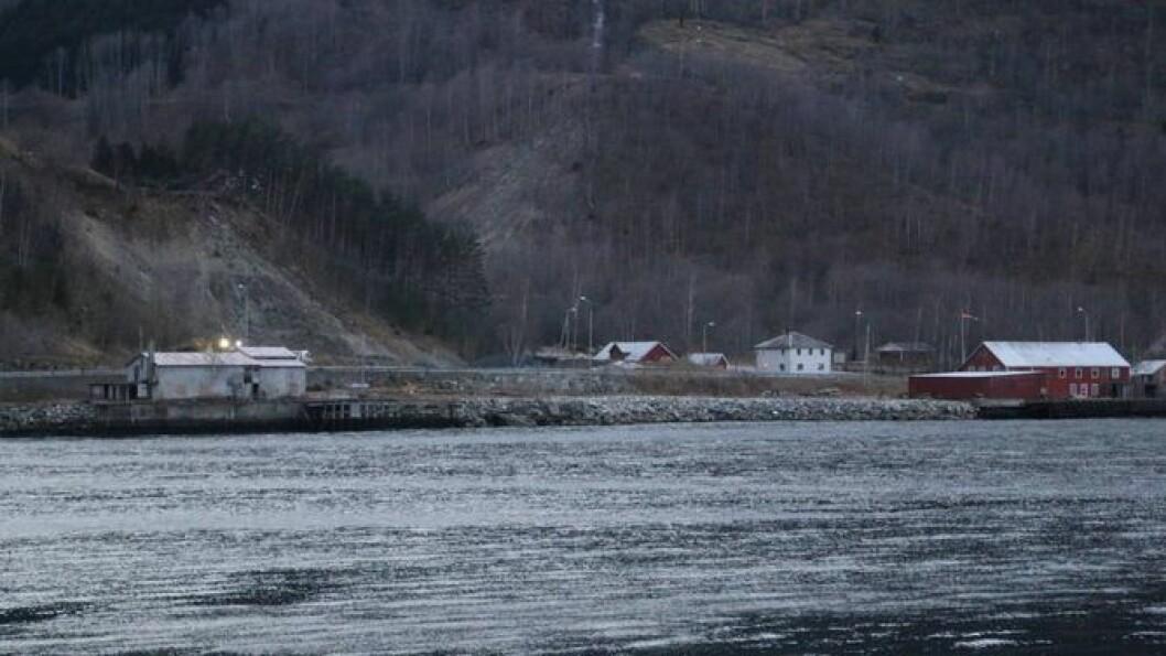 AKTUELL: At bukti i Erdal (på biletet) framleis er aktuell plassering for kai, reagerer grunneigar Ingrid Bjørkum sterkt på. Arkivfoto