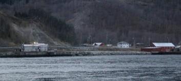 Luftslott, galimatias og politisk spel – om tømmerkai og pellets i Lærdal