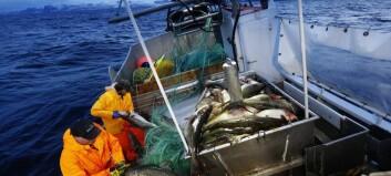 Stadig mindre fiskelykke