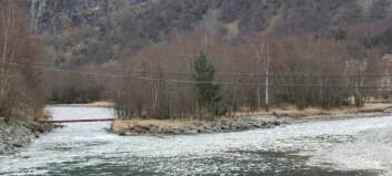 Massar frå storflaumen trugar elvebotnen i Lærdalselvi