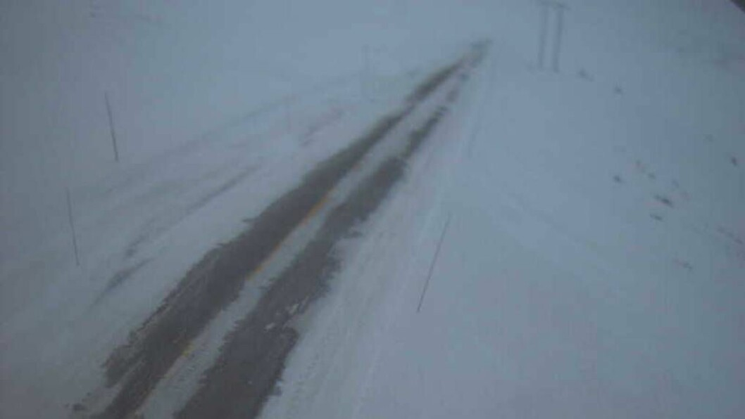 STENGT: På fylkesveg 50 Hol Aurland er det stengt tysdag morgon. Det er dårleg vêr i fjellet. Foto: Webkamera/Statens vegvesen.