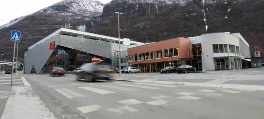 Handelen i Årdal med like stor vekst som resten av landet