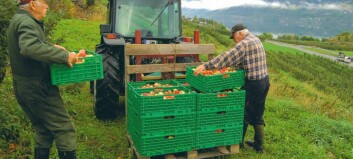 Ei reise i norsk fruktdyrking