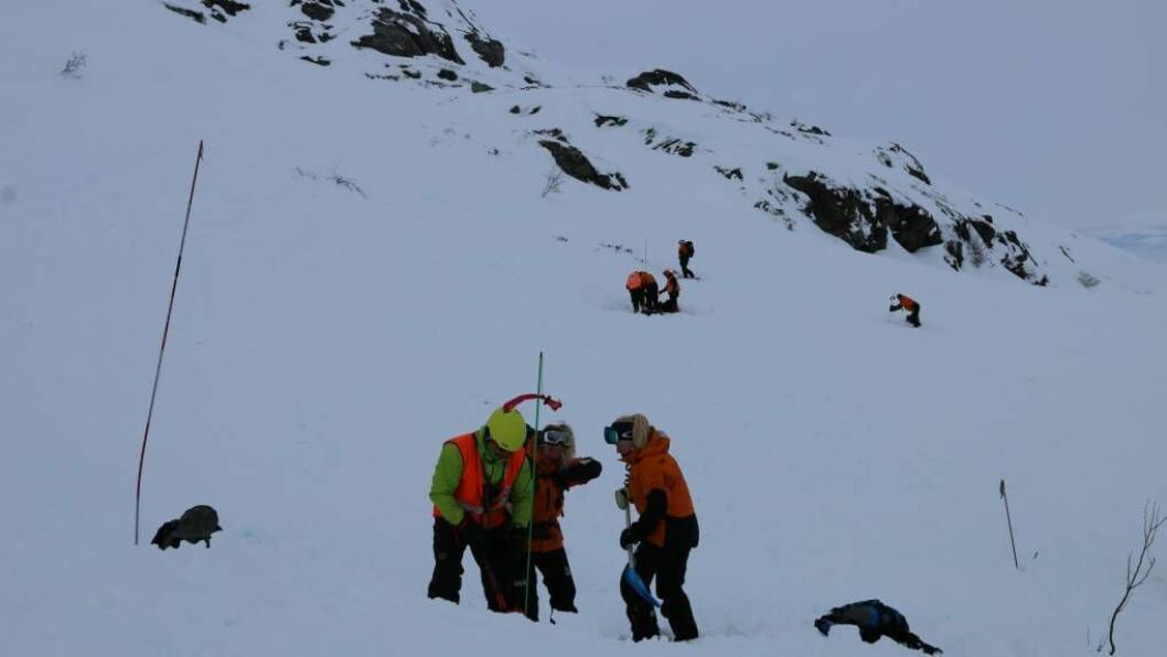 SKREDKURS: Her øver deltakarane på kva dei skal gjere etter at det har gått eit snøskred. Foto: Kaja Nygård