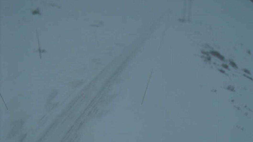 UVÊR: Det er ikkje optimale forhold i fjellet tysdag morgon, noko som fører til at fylkesveg 50 er stengt.Foto: Webkamera/Statens vegvesen.