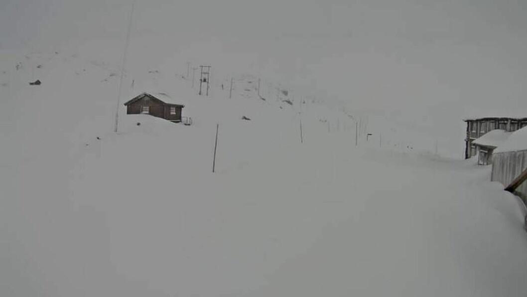 VINTER: Slik ser det ut ved Sognefjellshytta på fylkesveg 55, som onsdag vart vinterstengt. Foto: Statens vegvesen/Webkamera.