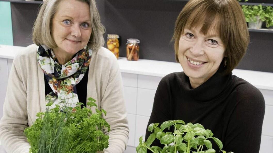 GIR URTETIPS: Ulike krydderplanter har ulike behov, forklarar Gerd Byermoen (til høgre) og Toril Gulbrandsen. Foto: Axel Sandberg