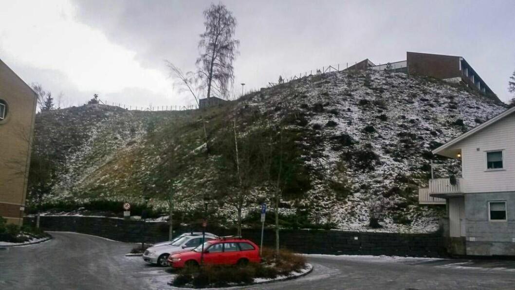 PLANANE KLARE: Skogen er rydda og detaljreguleringa er lagt ut på høyring. Det nye studenthuset i Sogndal vil bli bygt i skråninga mellom Fossbygget og det gamle gymnasbygget på Fosshaugane. Går alt etter planen kan bygginga starte om eitt år.
