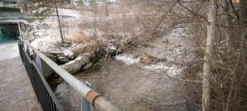 Veit ikkje kva som feilar denne elva