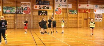 Den tradisjonelle handballturneringa