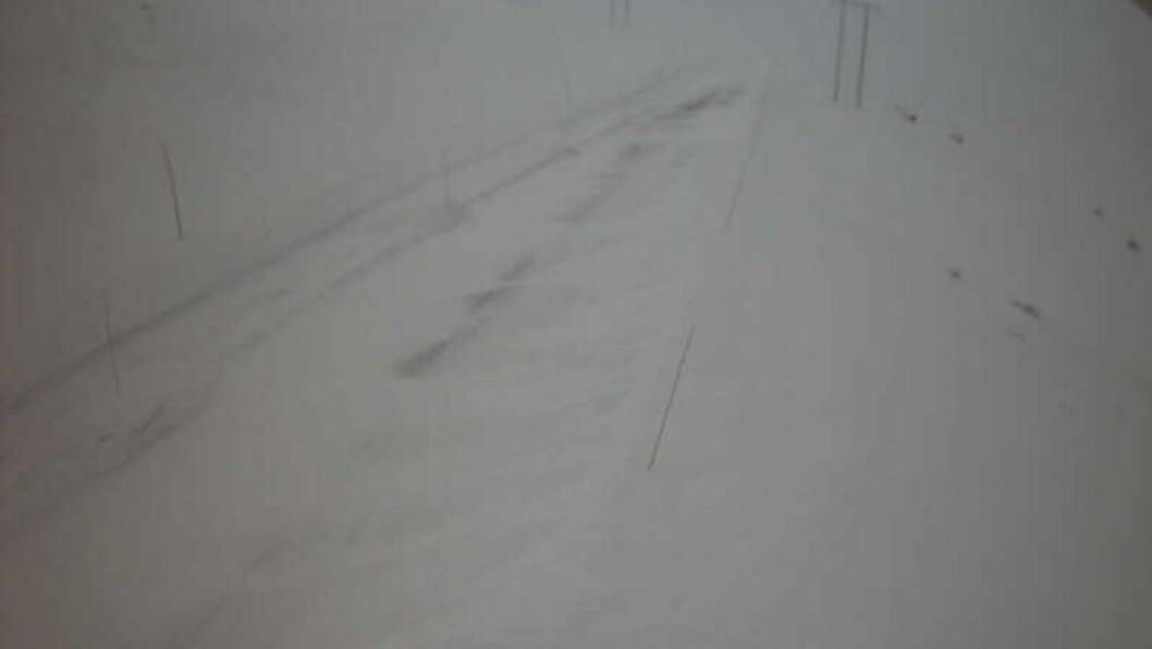 KOLONNE: Det var kolonnekøyring på Hol-Aurland nokre timar tysdag morgon. Foto: Webkamera/Statens vegvesen.