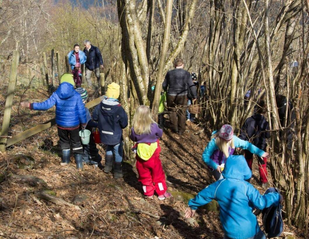 POPULÆR TRADISJON: Eggaleiting har blitt ein populær tradisjon for dei minste i Aurland. Foto: David Underdal