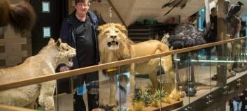 Han har skote dei fleste dyra sjølv – opnar dørene til villmarksmuseum