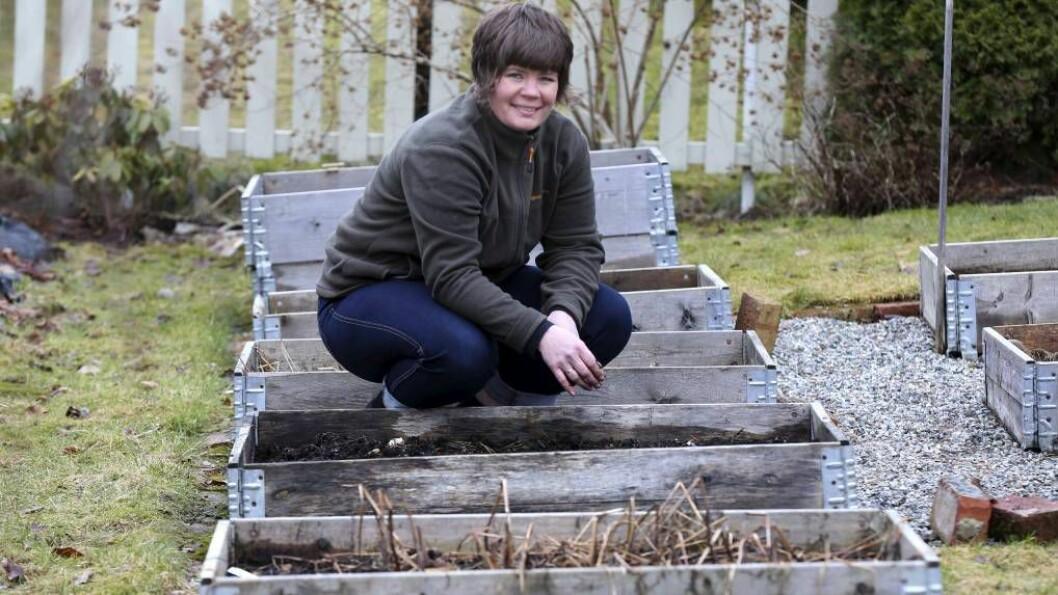 PALLEKARMAR: Gartner Marianne Utengen har vorte meir interessert i å dyrke grønsaker dei siste åra. Foto: Vidar Ruud / NTB scanpix.