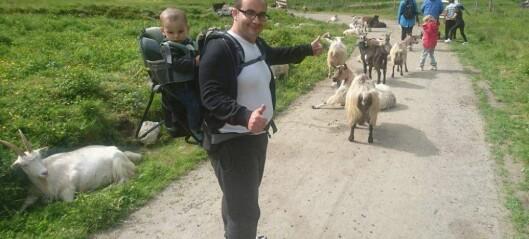 Flyktningane fekk smaken på norsk stølsliv