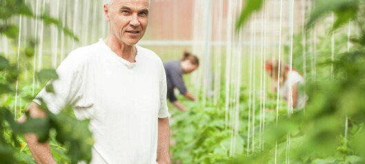 Økoskulen får EU-støtte til grøn satsing