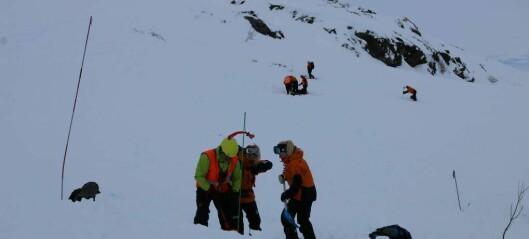Kraftig nedbør gir betydeleg snøskredfare