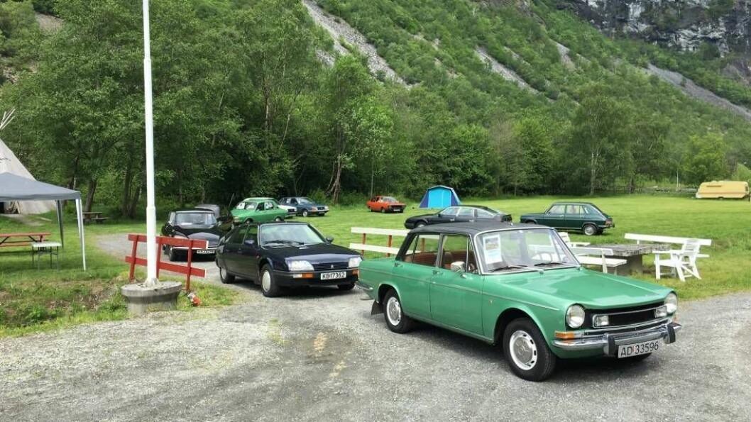TI BILAR: Til slutt vart det ti bilar under «Fransk biltreff» i Utladalen. Privat foto