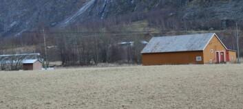 «Lærdal kommune, det er enkelt å rydde å opp i dette»