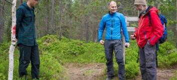 Ueinige om stisykling er ein fare for skogen
