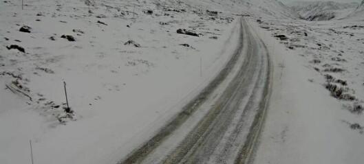 Spegelglatte brattbakkar mellom Lærdal og Hemsedal, to vogntog køyrde seg fast på Borlaug