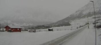 Statens vegvesen rår folk som skal over fjellovergangane til austlandet om å køyra før natta fell på
